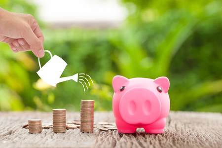 Money and piggy bank with woman hand  hold watering can, Growth of savings money concept.