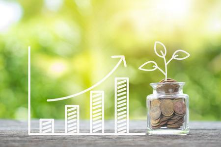 Pflanzen Sie das Wachsen in Einsparungensmünzen und wachsendes Diagramm auf hölzernem. Anlage- und Zins-, Instandhaltungskonzept Standard-Bild