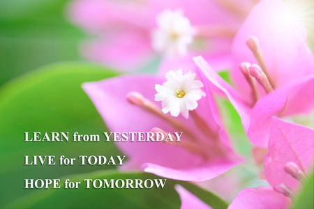 Life quote, motivation quote with natural background, LEARN FROM YESTERDAY, LIVE FOR TODAY, HOPE FOR TOMORROW Stok Fotoğraf - 89815375