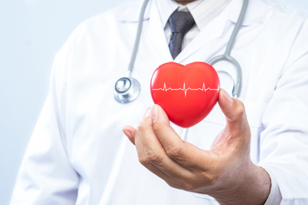 Professional medical doctor holding a red heart ball and cardiogramon. Concept of health care. Stock Photo