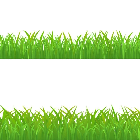 Green Grass Set, Vector Illustration.