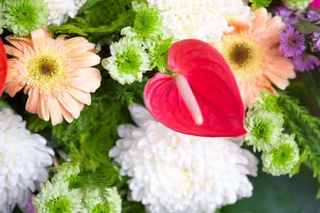 Bunch of flowers for background Imagens