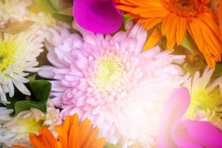 Bunch of flowers for background Stock Photo