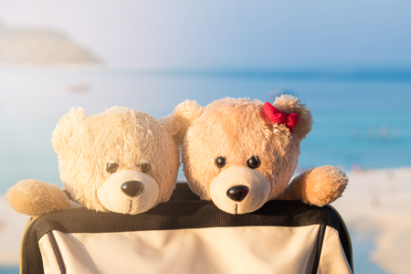 Two teddy bears sitting in valise. Love and relationship concept. Sunlight in the summer.