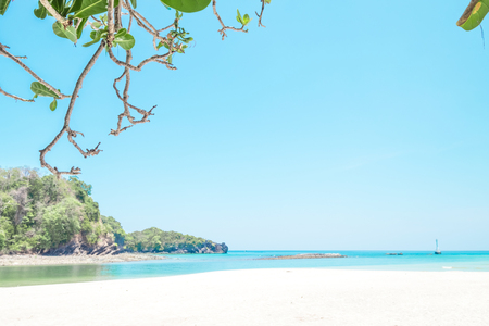 Beautiful white sand beach and tree with  island in summer time concept travel, holiday and vacation. Tropical paradise beach nature landscape in Thailand
