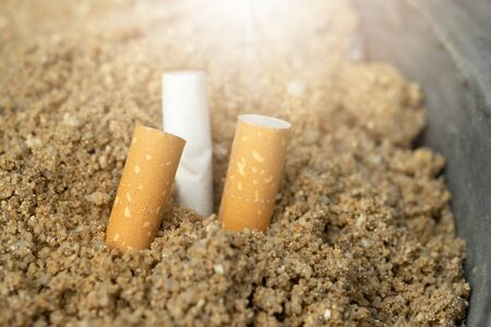 Pile of cigarette butts ,root to be the lung cancer Imagens