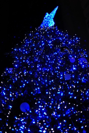 Beautiful christmas tree at night