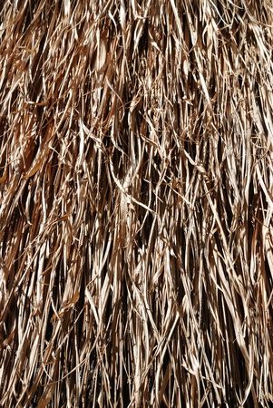 Background from thatch Stock Photo - 8838144