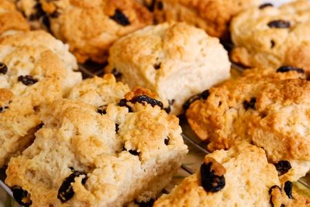 Close up of freshly baked fruit scones Stock Photo