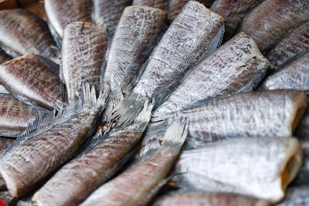 Fish  gourami dried in the sun, Thailand. photo