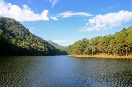 Beautiful forest lake in the morning Pang Ung  Mae Hong Son  Thailand   Stock Photo - 17806750