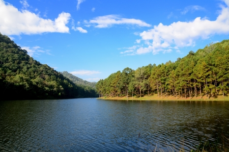 Beautiful forest lake in the morning Pang Ung  Mae Hong Son  Thailand   photo