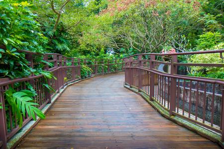 Wooden walkway in garden with green leaves.