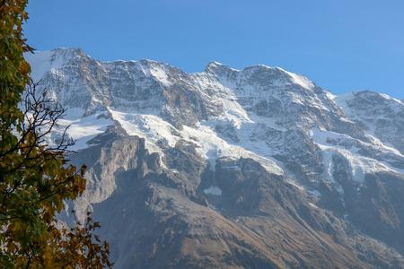Morning view on Bernese range on beautiful village in mountain scenery, Grindelwald, Berner Oberland, Canton of Bern, Switzerland Reklamní fotografie