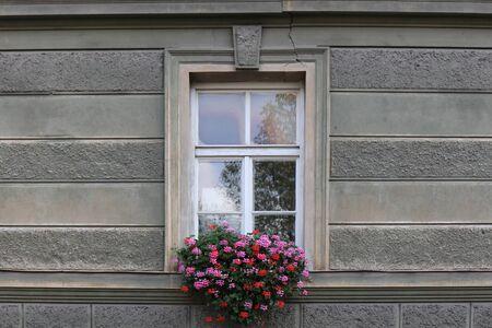 Beautiful window with flower box on top, Switzerland 版權商用圖片