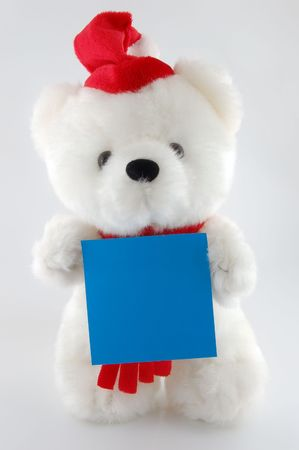 Teddy bear with blank sheet for your own text hat on white background Stock Photo - 2689497