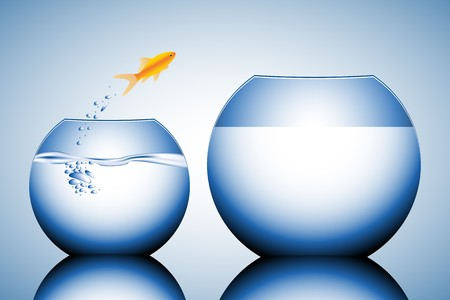 goldfish jumping out of the water vector illustration Stock Illustration - 4394038