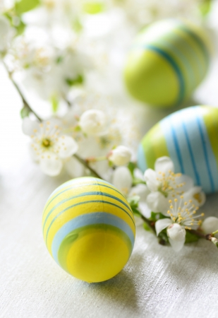 easter eggs: Easter eggs and branch with flowers on wooden background