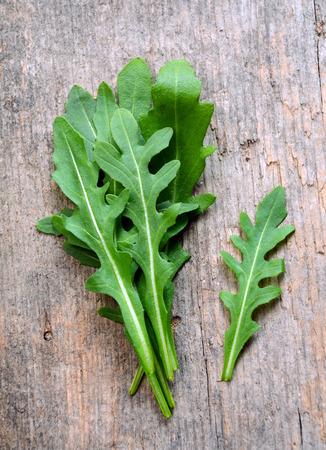 Fresh arugula  salad rocket  roquette  rucola leaves
