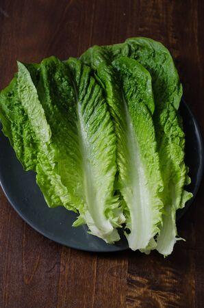 romaine: romaine lettuce leaves on a dark background