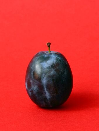 prune: Single ripe prune, or plum on a red background