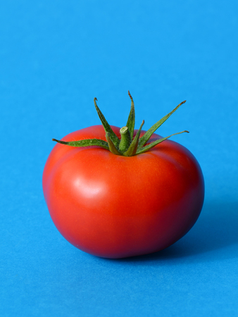 One ripe tomato on a blue background