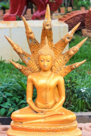 Sculpture of Buddha protected with king naga photo