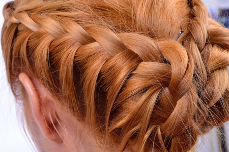 updo: Rear view of a hairstyle