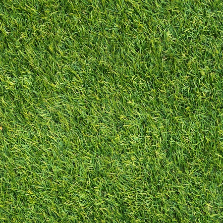 artificial green grass photo
