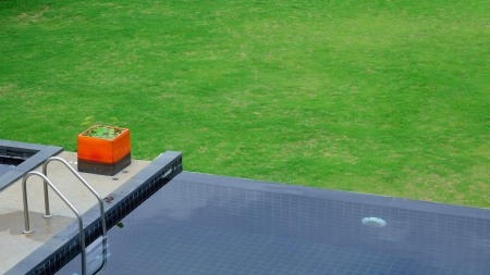 black swimming pool in green grass garden photo