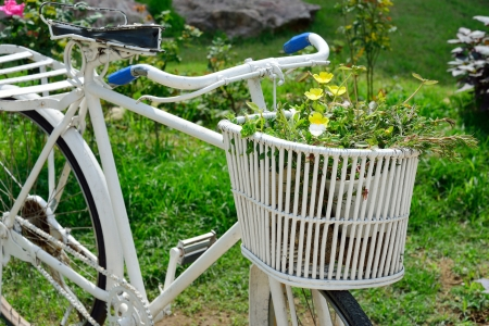 bicycle with flowers decoration photo