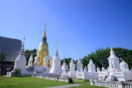 Wat Suan Dok is Thai temple in chiangmai, Thailand photo