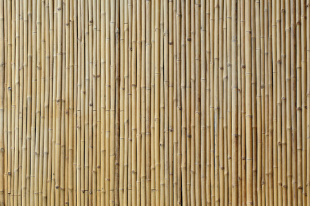 bamboo background: bamboo wall texture background Stock Photo
