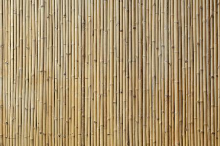 bambou: bambou texture de fond mur