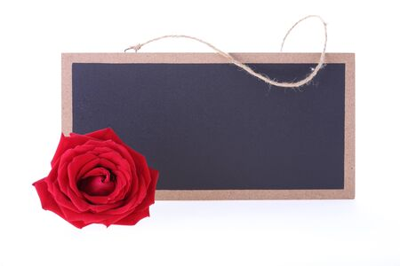 sign blank: chalkboard sign blank text message with red rose flower isolated on white background Stock Photo