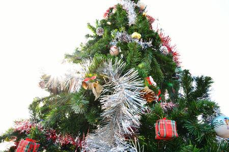 huge christmas tree: big christmas tree