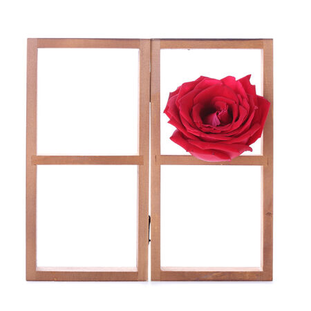wood shelf decorated with red rose flowers isolated on white background photo