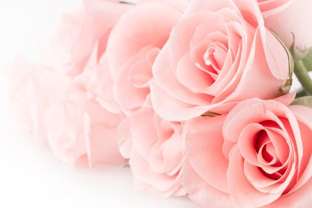 pink flower: rose flower bouquet vintage background