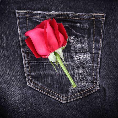 red rose flower on black jeans denim texture photo