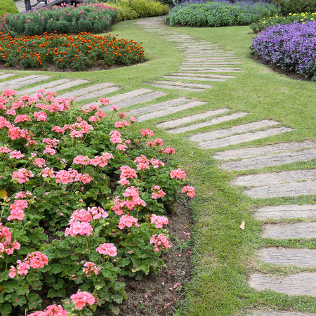 landscape of floral gardening with pathway in garden photo