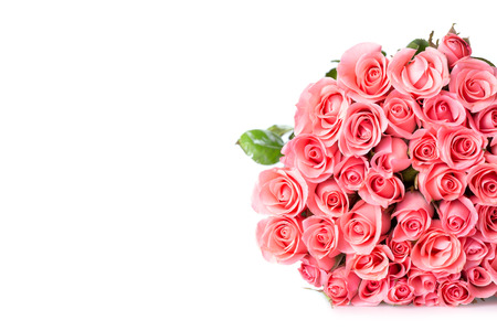 pink rose flower bouquet on white background photo