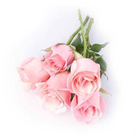 bouquet fleur: fleur rose sur fond blanc