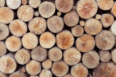 pile of logs: Pile of wood logs storage for industry