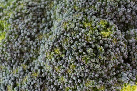 close up image: green broccoli organic vegetable, close up image