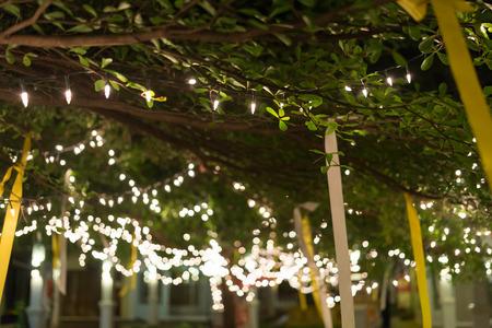 celebra: decoraci�n de la luz celebre colgado en �rbol, imagen abstracta borrosa fondo desenfocado Foto de archivo