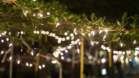 decoration light christmas celebration hanging on tree, abstract image blurred defocused background