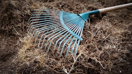 yard work: yard work, preparation soil in garden with rake shoveling dry grass