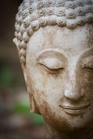 cabeza de buda: estatua de Buda en wat umong, Chiang Mai, recorrido templo tailand�s en el norte de Tailandia, Tailandia