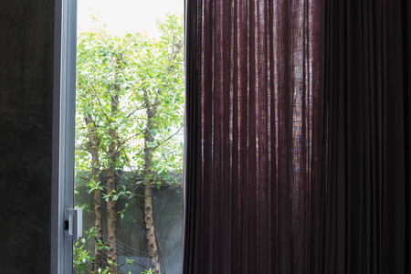 violet residential: interior home decor, purple curtain in the room with natural view outside the window