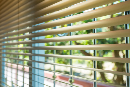 window blinds: window blinds open with blur natural view background